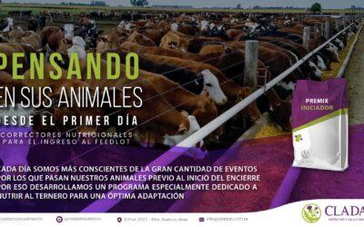Ingreso de animales al feedlot – Potenciando el sistema inmune desde la nutrición