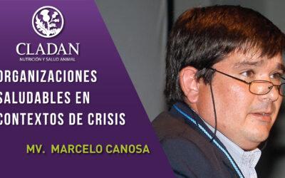 Cladan Webinar: Organizaciones saludables en contextos de crisis