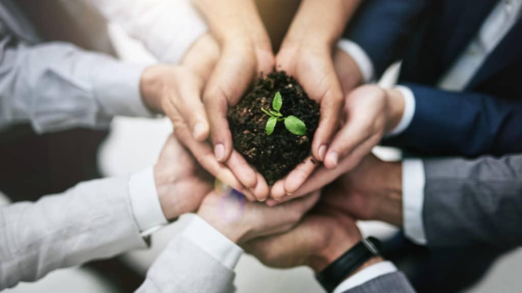 Avanza la Ley de Educación Ambiental Integral